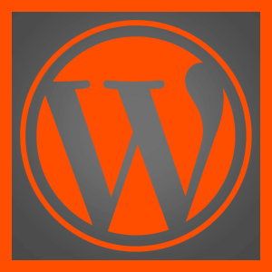 Bespoke WordPress training in South West, UK
